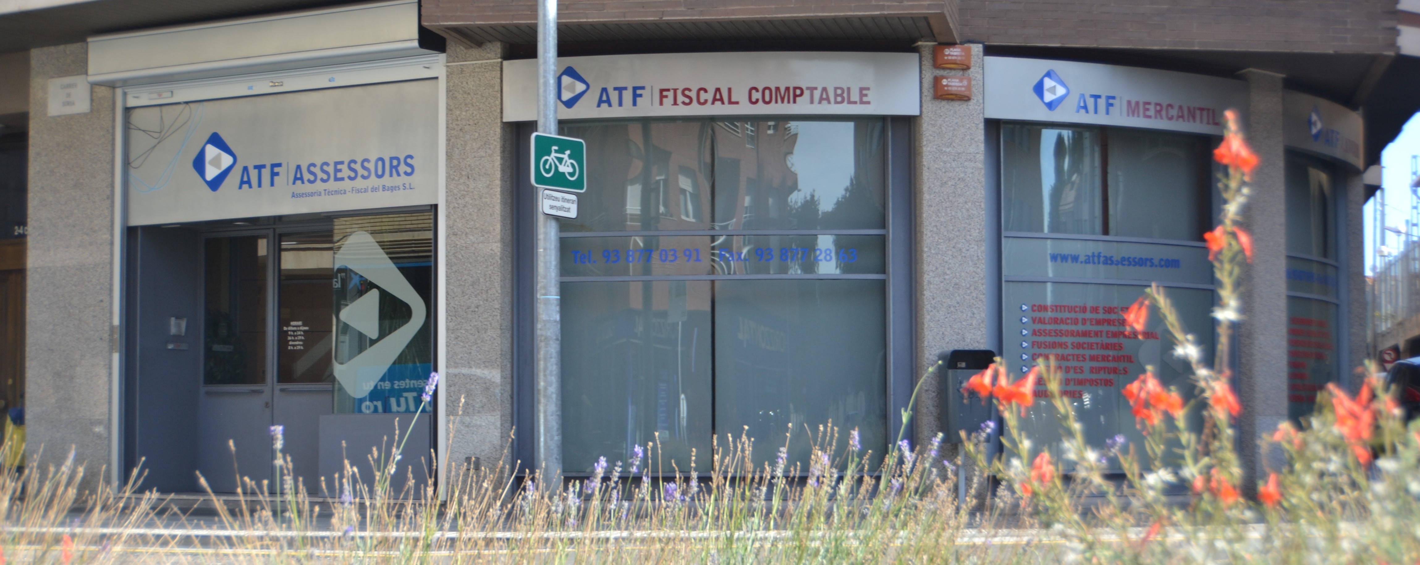 ATF local